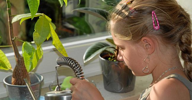 Gesund Wohnen Mit Pflanzen Im Kinderzimmer | Blumen Und Zimmerpflanzen Helfen Den Stress Abzubauen