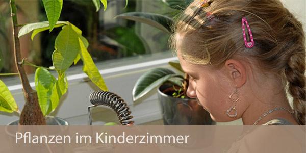 Gesund wohnen mit pflanzen im kinderzimmer for Pflanzen im zimmer