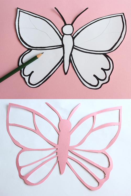Schmetterling_5