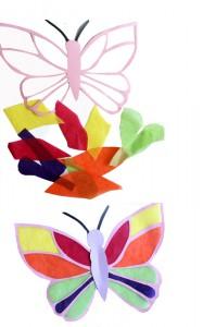 Schmetterling_6